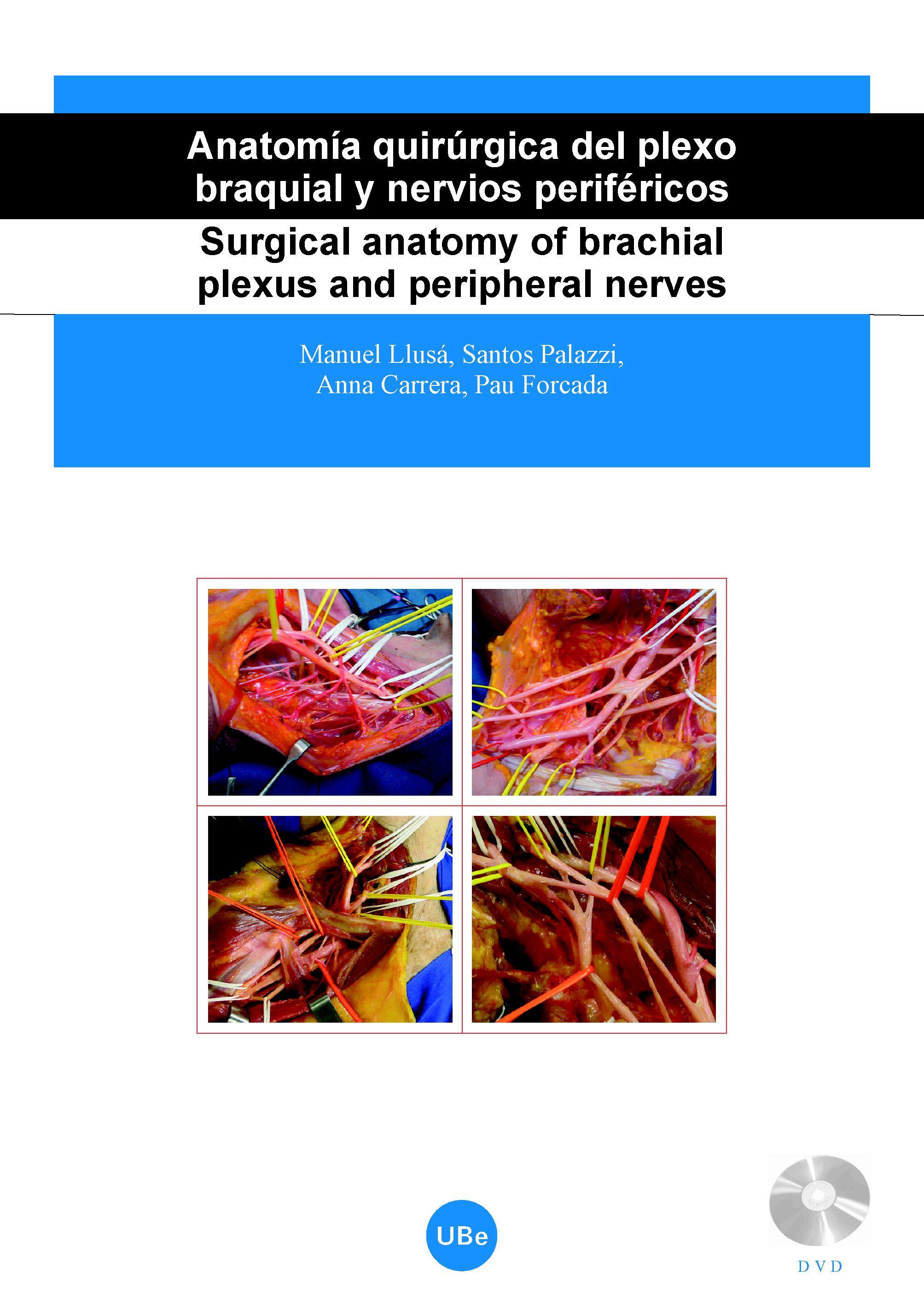 Anatomía quirúrgica del plexo braquial y nervios periféricos ...